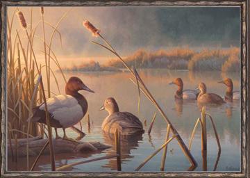 Ducke Print